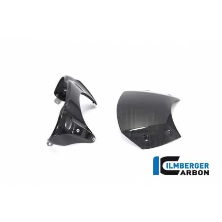 Windshield Carbon - BMW R Nine T