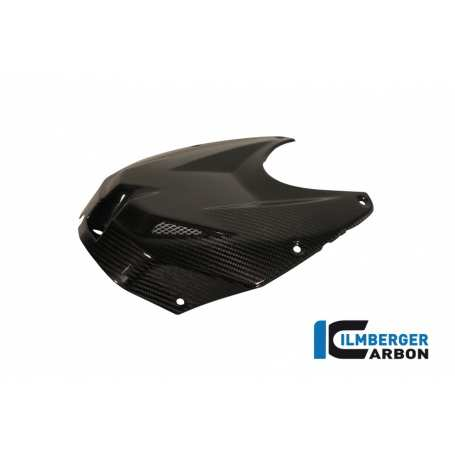 Upper Tank Cover Carbon - BMW S 1000 RR Stocksport/Racing (2010-2014)