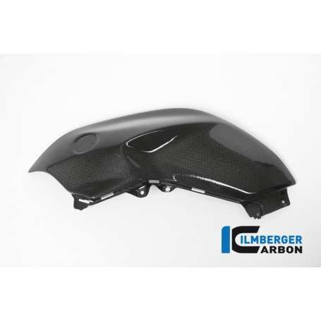 Tank Panel left Side Carbon - BMW R 1200 R (LC) from 2015