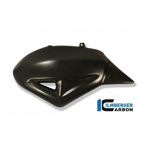 Swing Arm Cover Carbon - Ducati Diavel