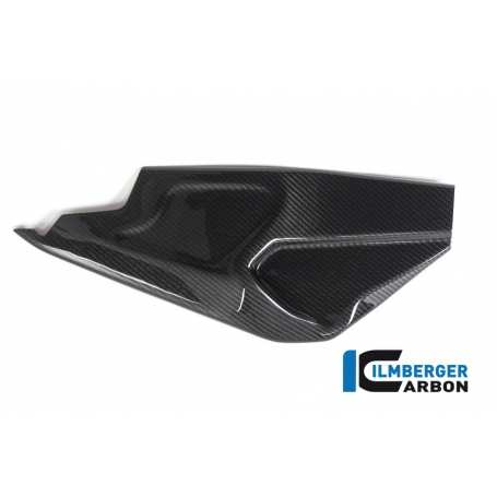 Swing arm cover right side BMW HP4 RACE