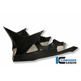 Bellypan one piece Carbon - BMW S 1000 RR Street