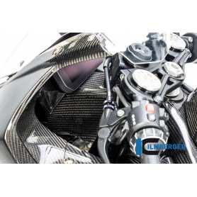 Front Fairing Holder/Instruments Holder BMW S 1000 RR Race 2019