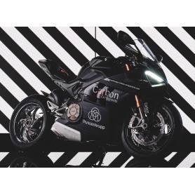 Ducati PanigaleV4 /Streetfighter  V4 Style 1